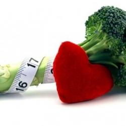 Colesterol malo y bueno