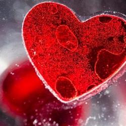 Estudio revela que las células madre también detienen envejecimiento del corazón