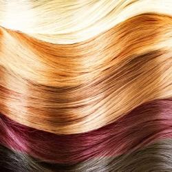 Consiguen que crezca pelo nuevo tras arrancar cabellos con una densidad concreta