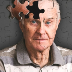 Probarán en humanos un fármaco capaz de ralentizar el Alzheimer