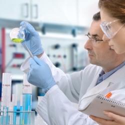 Las células madre de la grasa pueden ayudar a reparar el daño cardíaco