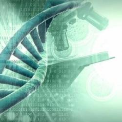 Descubren gen supresor de tumores en un cáncer de pulmón muy agresivo